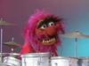 animal_drum_duet.jpg