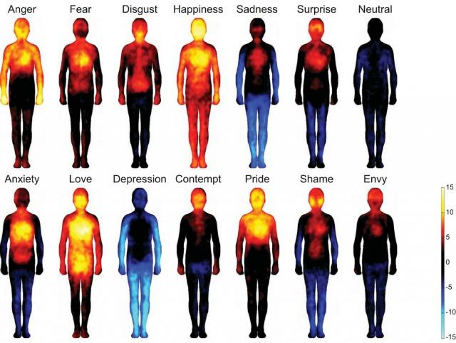 Body Map Emotions