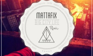 mattafix remix leex